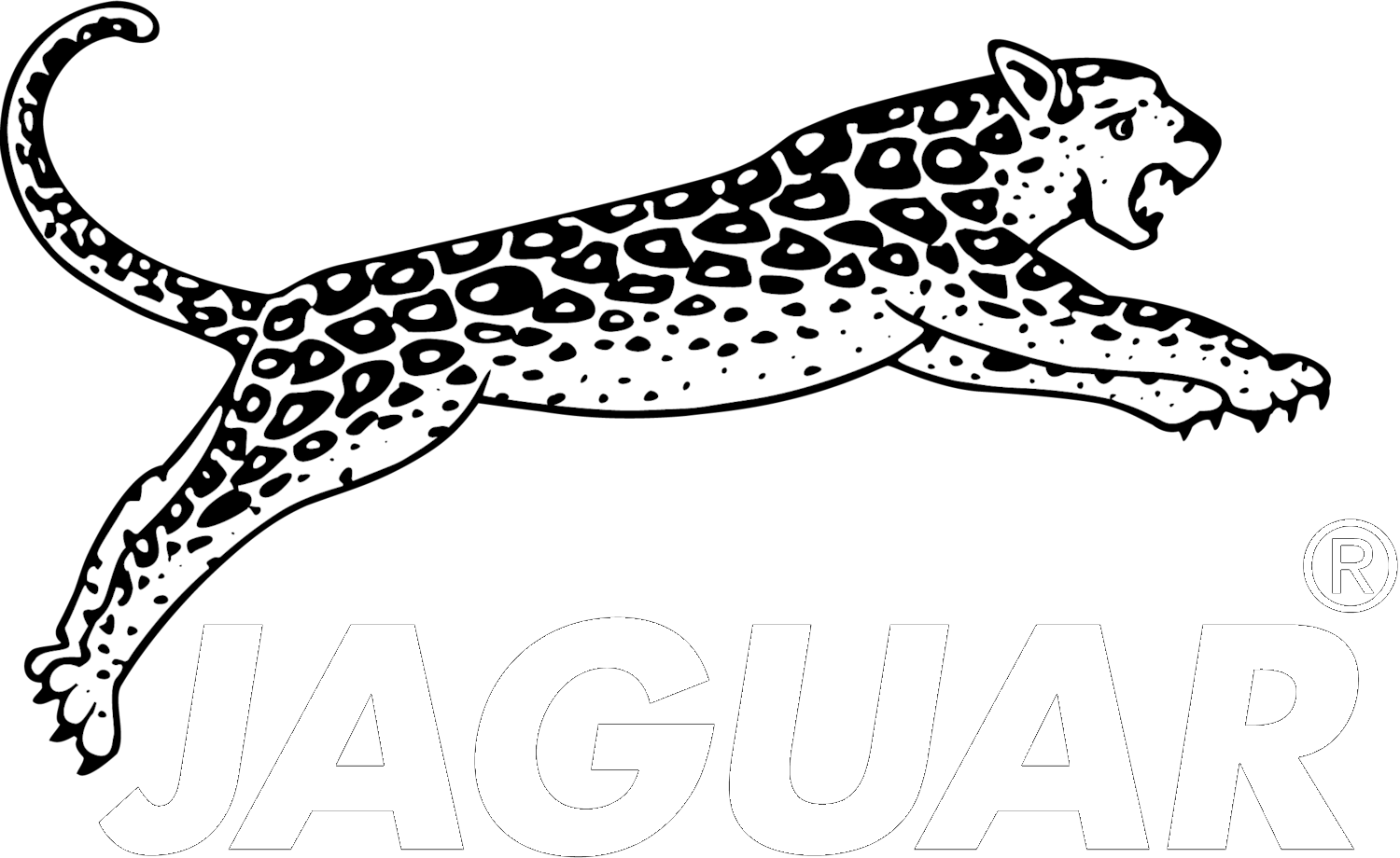 jaguar hair